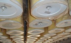 专业做钢厂各种除尘净化滤筒LF210X345